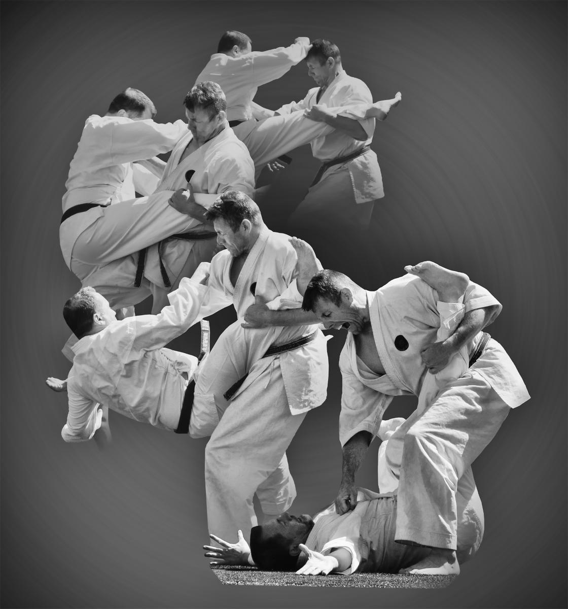 'A Karate Throw and Takedown' (CI 1 Place) by Jean Millman - AL