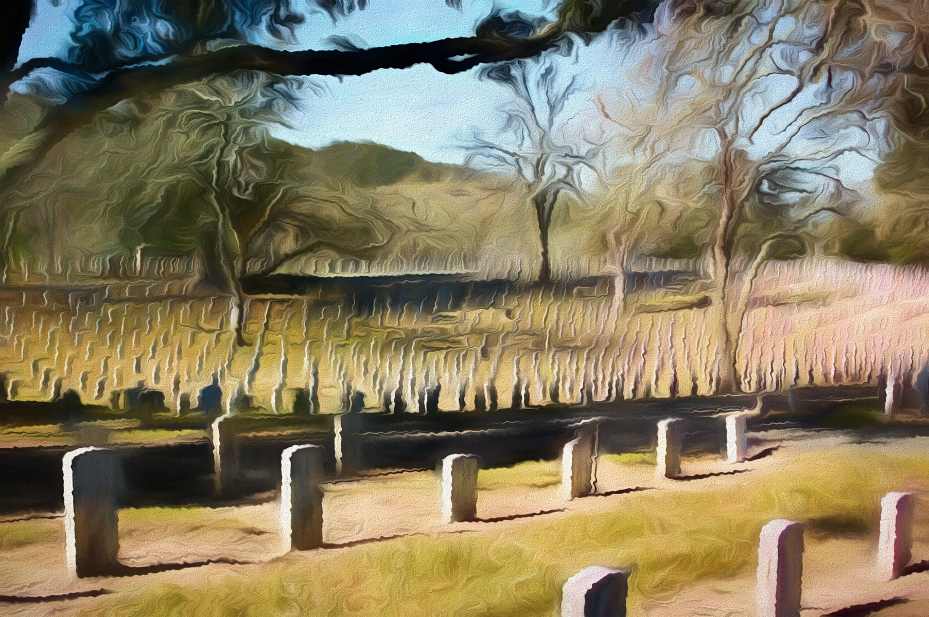 'Impression of vast Veteran's Cemetery at Yountville, California' (CA 1 Place) by Richard Finn - LV