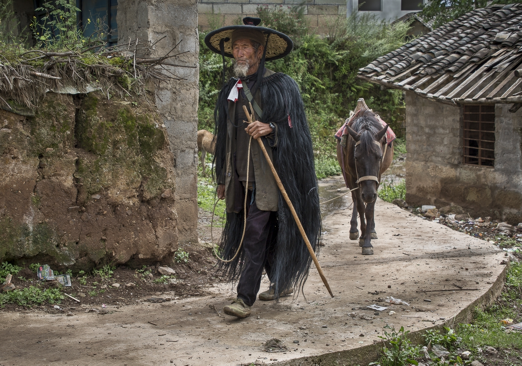 Old-Farmer-Walks-to-the-Weekly-Market-Sichuan-China-TM-Best-in-Show-by-Dorothy-Weaver-MR