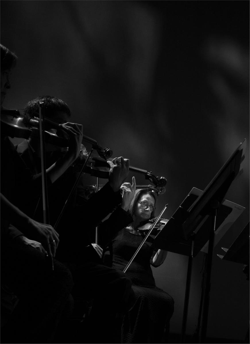 Fiddlers-Noir-MB-1-Place-by-Stephen-B.-Hahn-AL