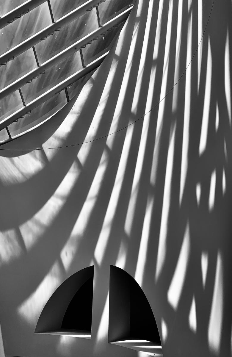 Shadows-on-a-Museum-Wall-MI-1-Place-by-Karen-Laffey-MR