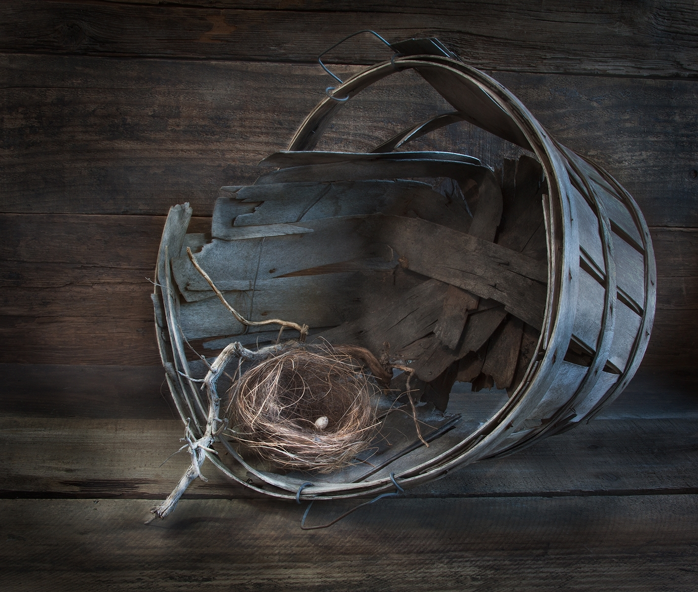 'Bird Nest and Old Sticks and Basket' (PM Best in Show) by Claudia Peterson - SC