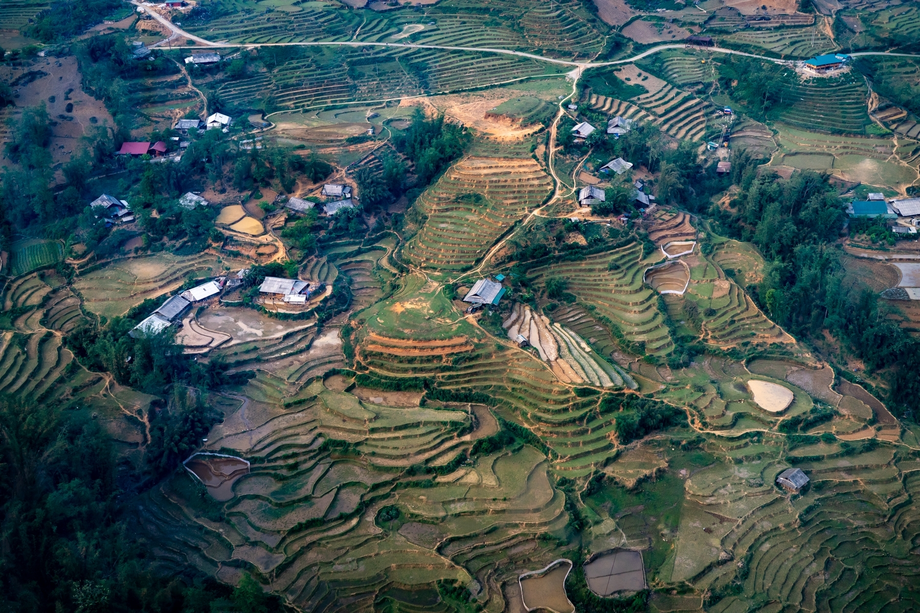 'Terrace Farming in the Mountains of Northwestern Vietnam' (TA 1 Place) by Edward Nowak - SC