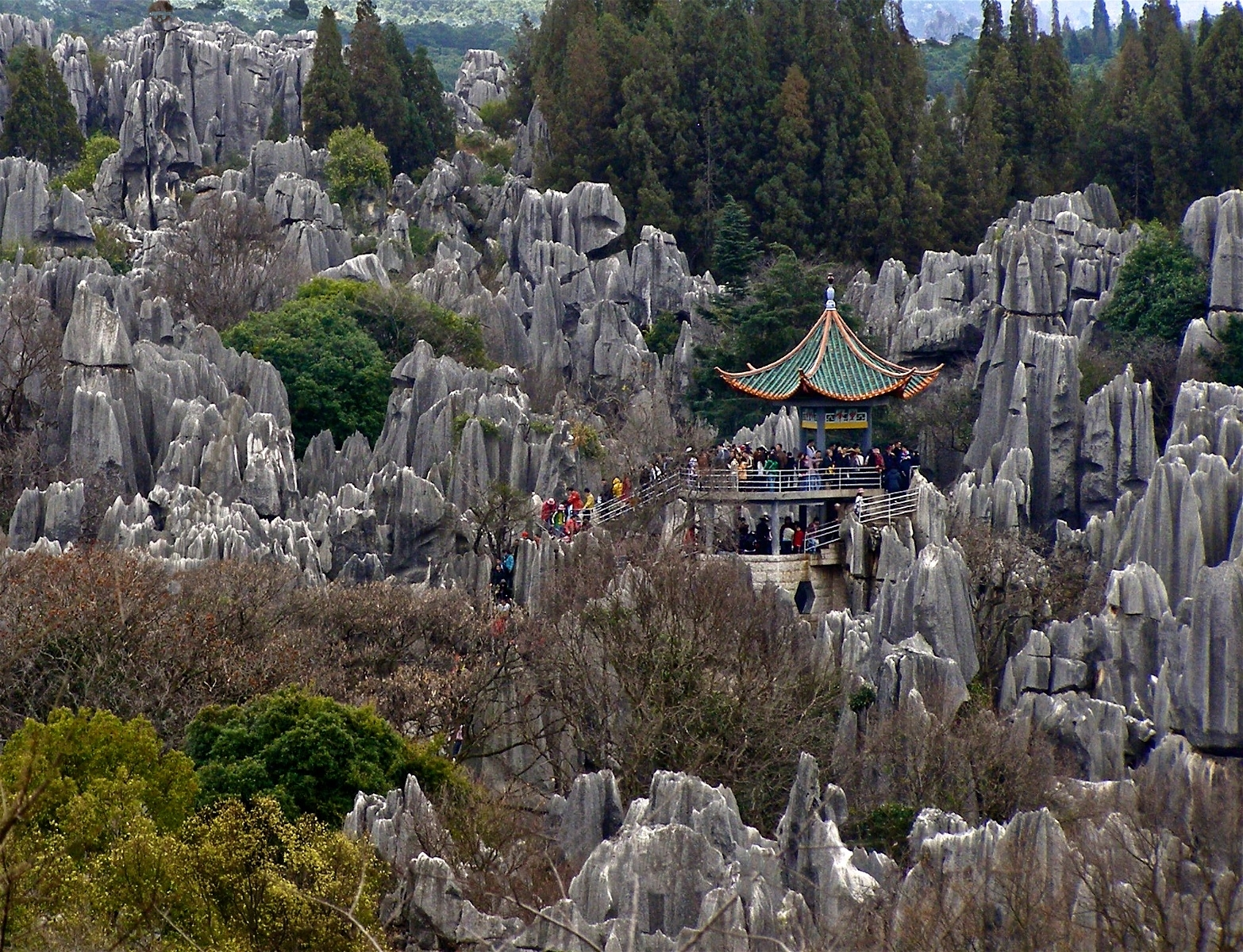'The Stone Forest, a UNESCO World Heritage site, is a masterpiece of nature.' (TM 1 Place) by Loujean LaMalfa-Prince - SR