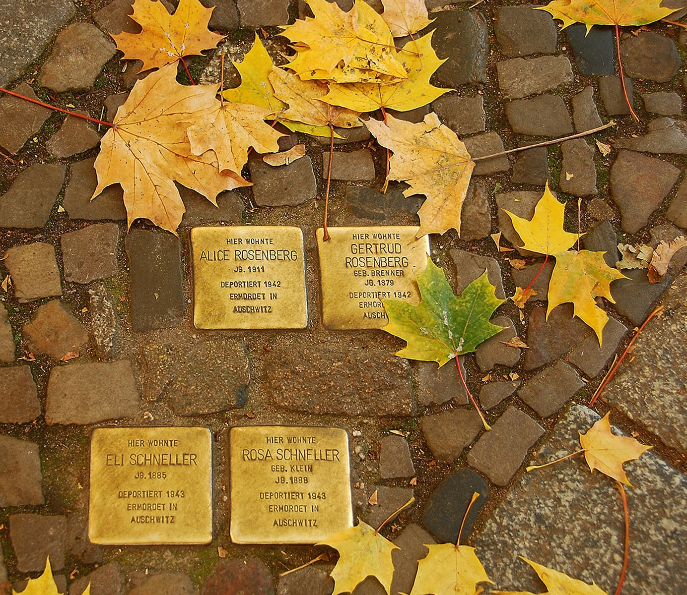 The-Stolpersteine-project-places-plaques-in-German-cities-near-the-victims-last-known-residence-JM-1-Place-by-Diana-Rebman-ML