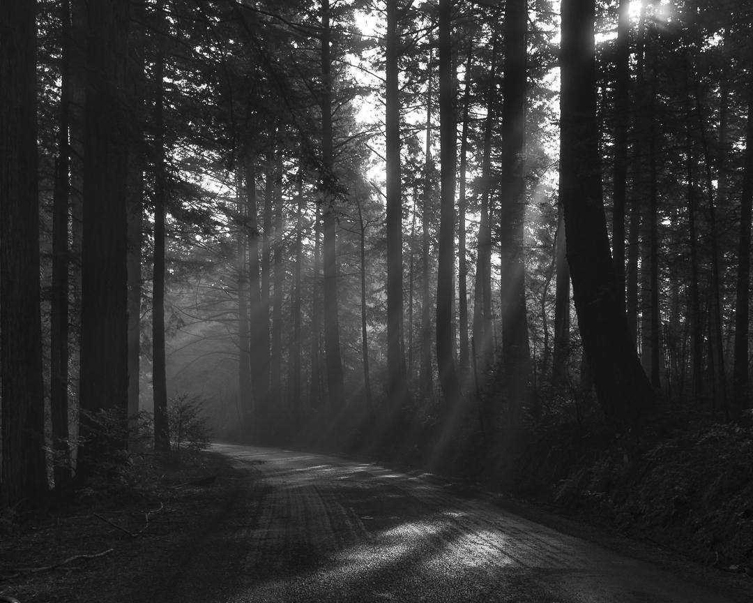 Mountain-Road-MI-1-Place-by-Sherri-Oster-SR