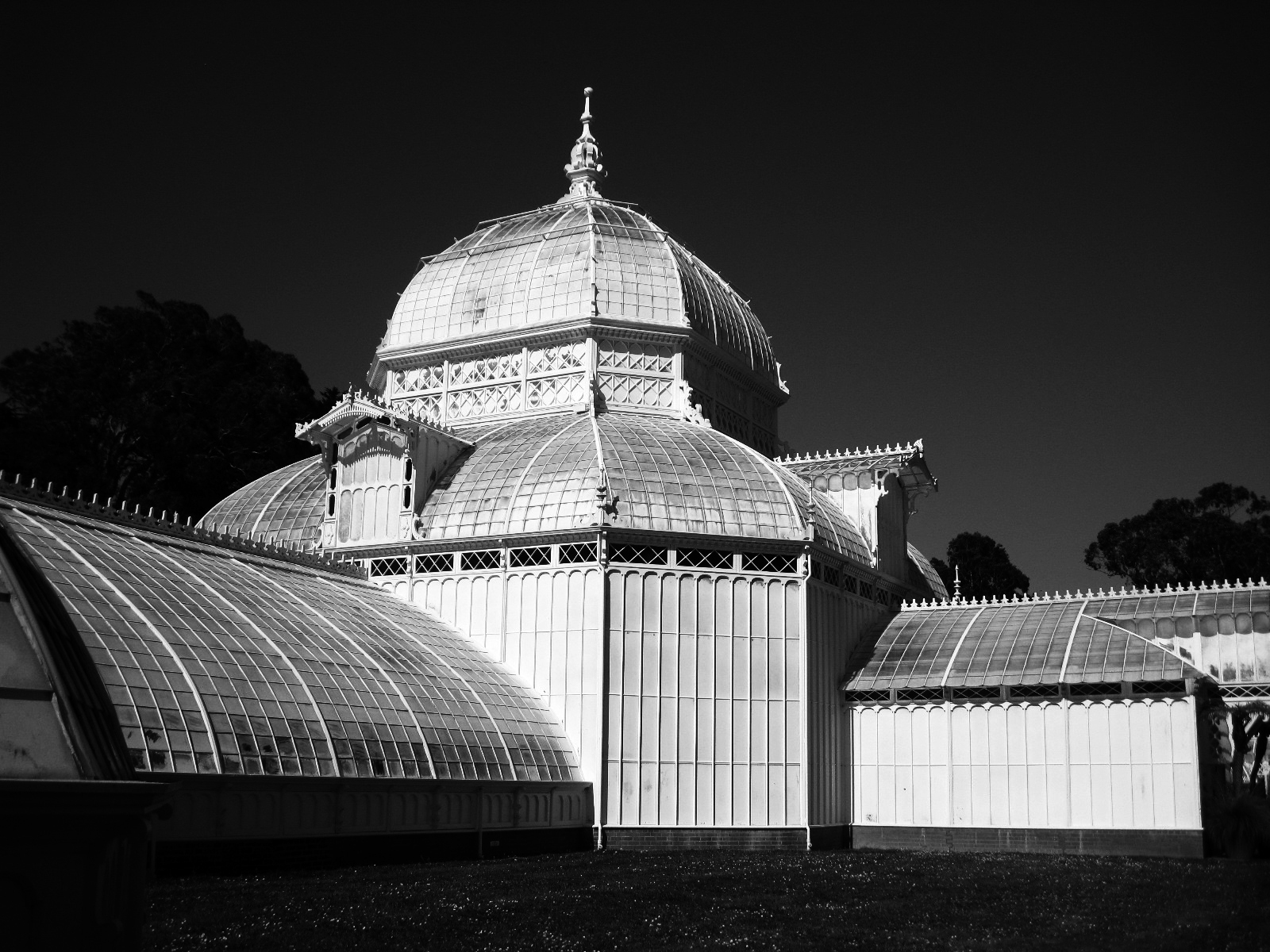 'Conservatory of Flowers-Golden Gate Park' (MB 1 Place) by Joyce Bell - MR
