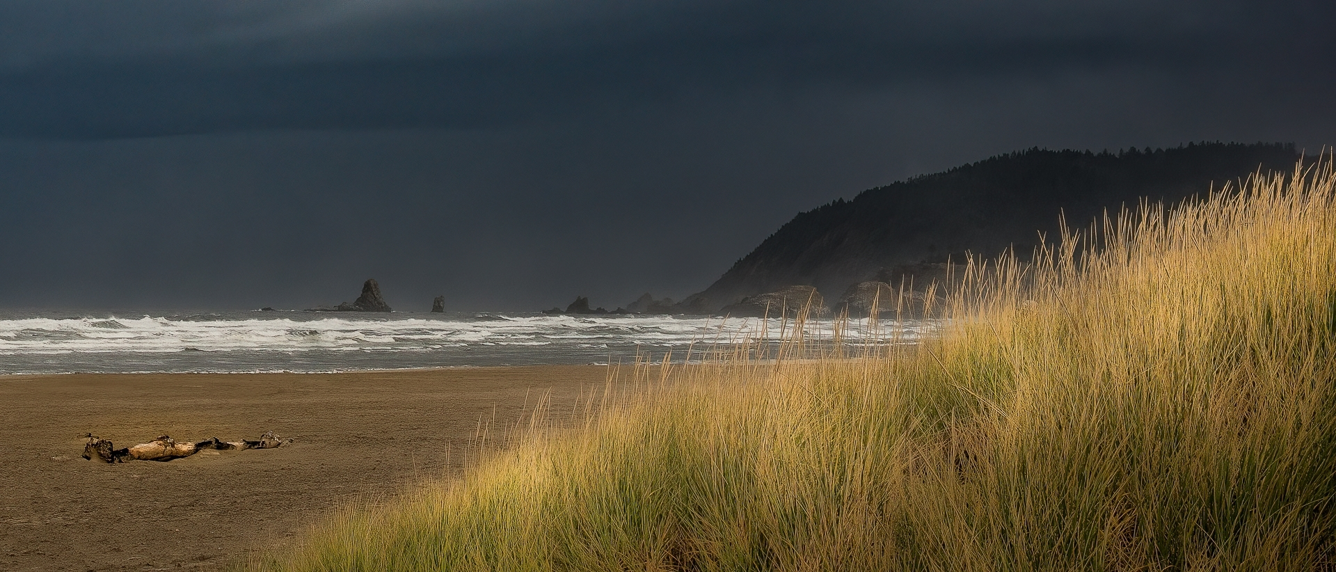 Storm-coming-in-on-Oregon-beach.-PA-1-Place-by-Carolyn-Rodriguez-SC