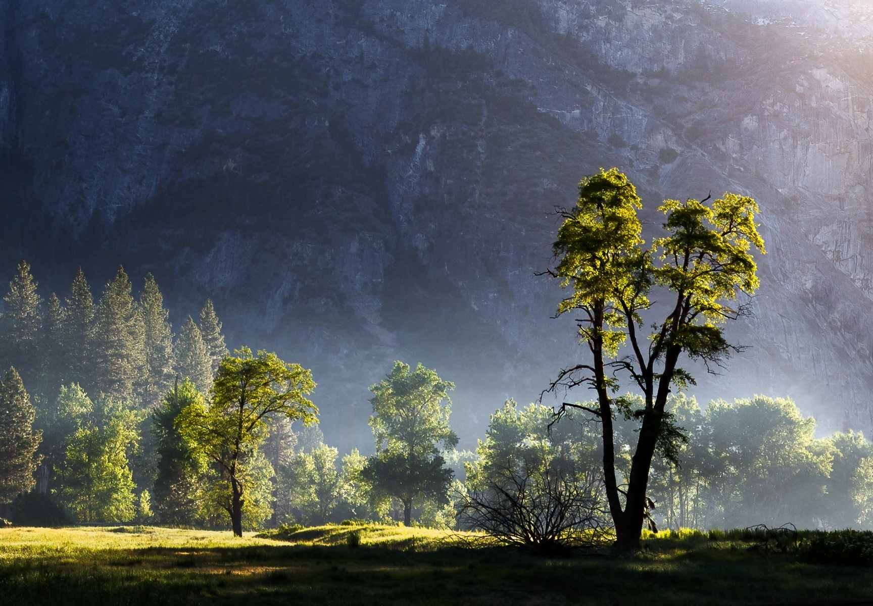 Yosemite-Valley-PI-Best-in-Show-by-Michael-Oshima-SC